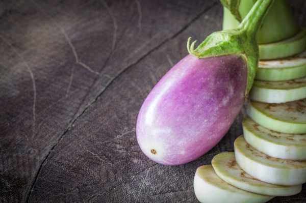 茄子的病虫害及其防治