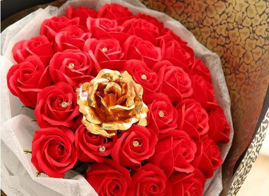 <b>收到的玫瑰花怎么保存?扦插种植/插花瓶/制成干花</b>