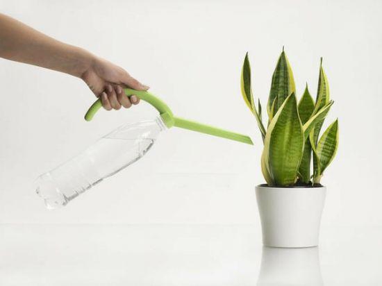 给花卉浇水