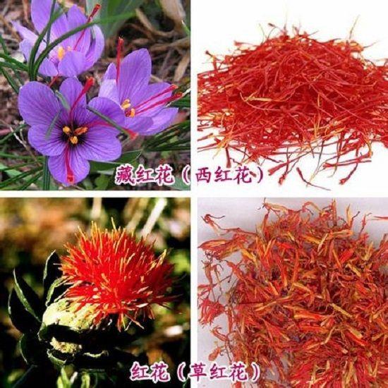 藏红花与红花