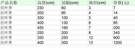 红叶李市场价钱参照表