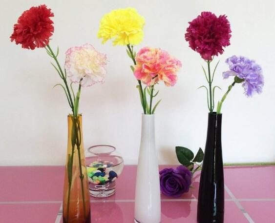 高的花瓶适合养什么花?最适合大气高贵有逼格