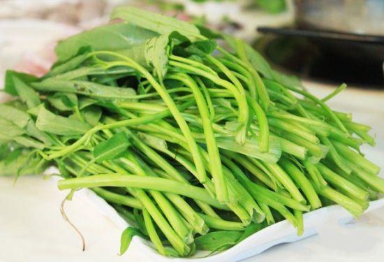 蕹菜的种植方法