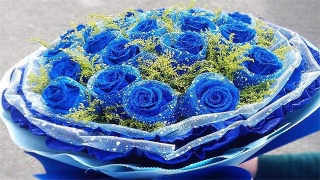 <b>蓝玫瑰花语:敦厚善良/清纯的爱</b>