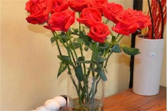 玫瑰花可以放水里养吗?玫瑰花插水里能活几天(5~20天)