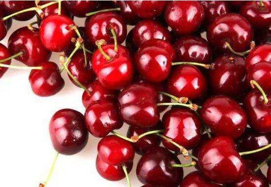 车厘子和樱桃是一样吗?车厘子跟樱桃的区别(4种)
