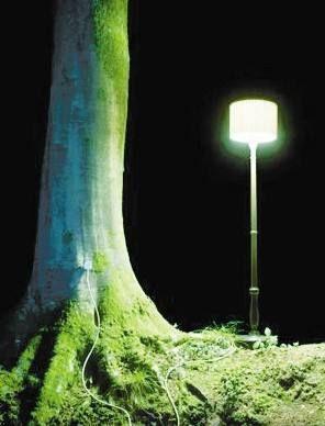 发电树(图文跟本文无关)
