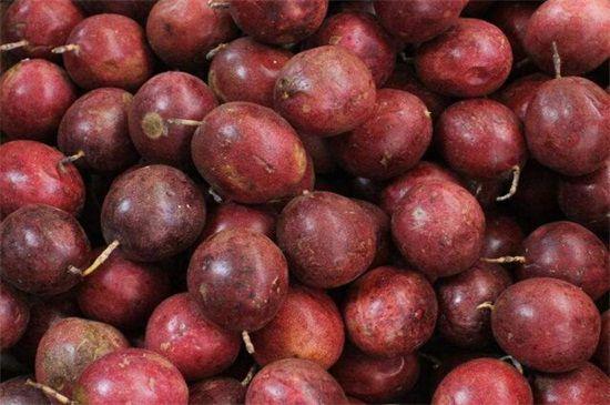 百香果成熟的样子,呈为紫色且大小不一