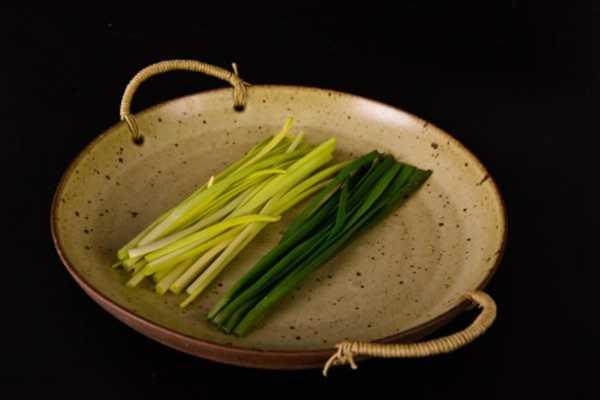 韭菜图片:韭菜种植管理技术