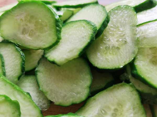 黄瓜种植方法