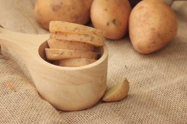 马铃薯的病害防治