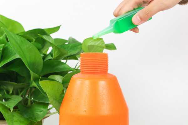 绿萝黑斑病用肥皂水吗