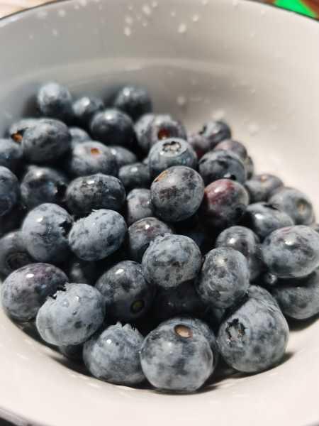 蓝莓多少钱一斤,蓝莓价格